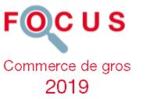 Couverture Focus Commerce de gros 2019